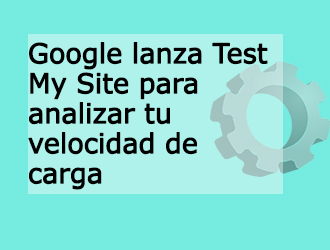 Test My Site de Google
